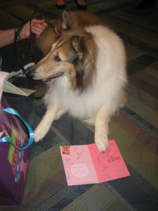 Abby, a reading therapy dog at the Smith Public Library, sits happily with her birthday card. Abby reads with local children helping them gain self-confidence when reading aloud.