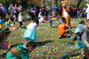 "Greg Ford/The Wylie News Approximately 1,580 visitors descended upon local wildlife and rescue center In-Sync March 26 to visit and attend egg hunts for three different age groups. Over 10,000 eggs per hunt were up for grabs for the children who attended. Chuffy the tiger was on hand to supervise the activities. The annual event raises funds which go directly to operating expenses. Owner/founder Vicky Keahey said they had almost 200 more visitors than last year. ""We thank you for your continued support,"" she said."