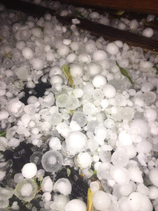 Hail of all shapes and sizes was dropped over the Wylie area Wednesday night. Courtesy of Audry-Billy Cooksey.