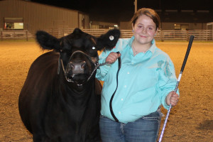 Joe Reavis/The Wylie News Wylie East High School showman Kelly Smith shows her crossbred entry that was selected grand champion steer in the 49th annual Wylie Show and Sale.