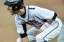 Wylie baseball, softball bound for the playoffs