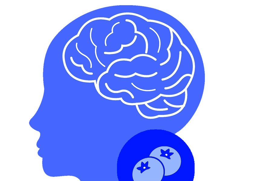 Blueberries and the brain