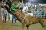 Chamber again watching weather for rodeo
