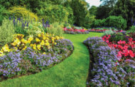 Hiring a landscaper may be right for you