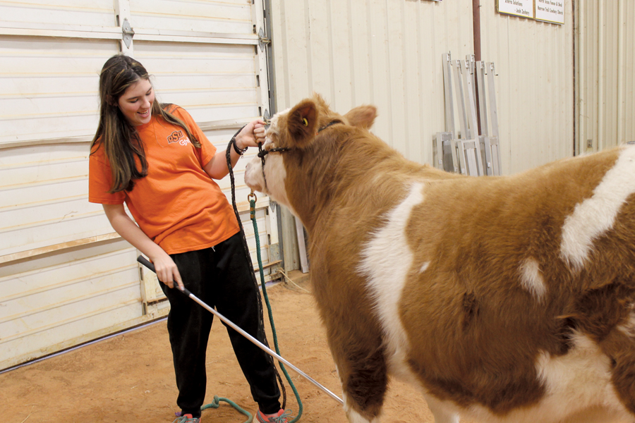 County livestock show opens Jan. 6