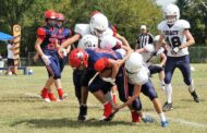 Patriots slay Lions in opener