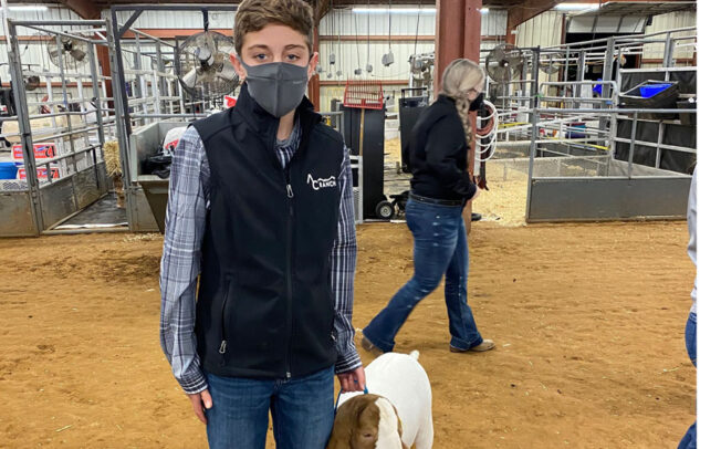 Junior Livestock show results for Wylie ISD students
